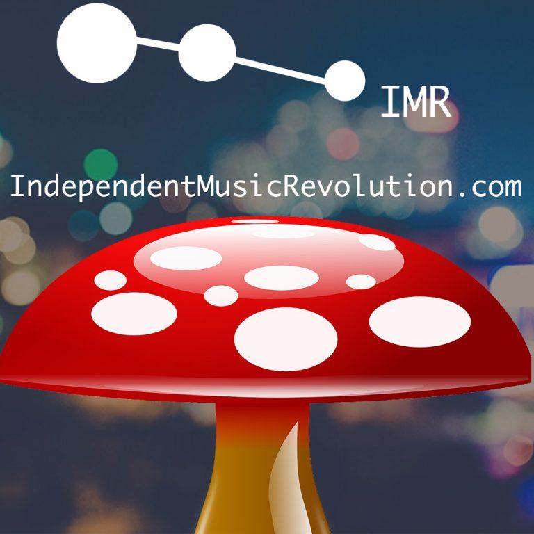 Indie Music Portal