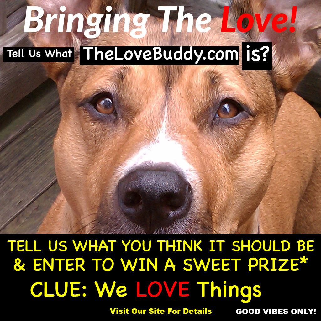 The LOVE Buddy - Home Og LOVE!